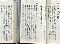 The diary of the Higashi-Hakura family